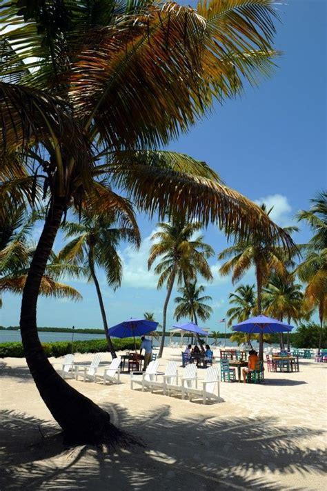 Best 25+ Key Largo Florida Ideas Only On Pinterest