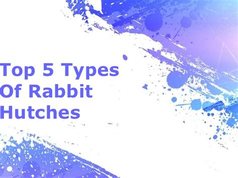 Types Of Hutches - top 5 types of rabbit hutches