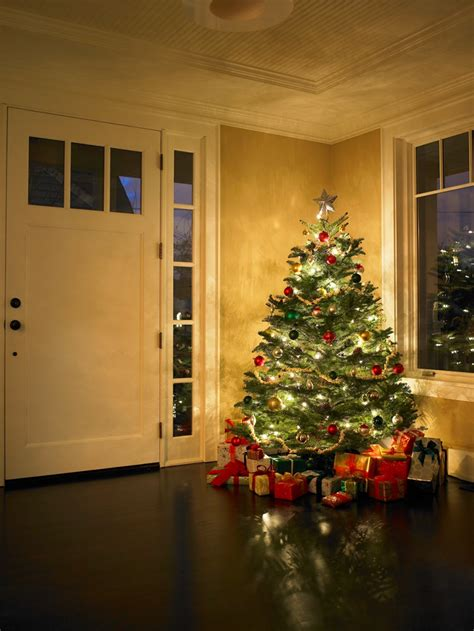how to pick and care for the perfect christmas tree