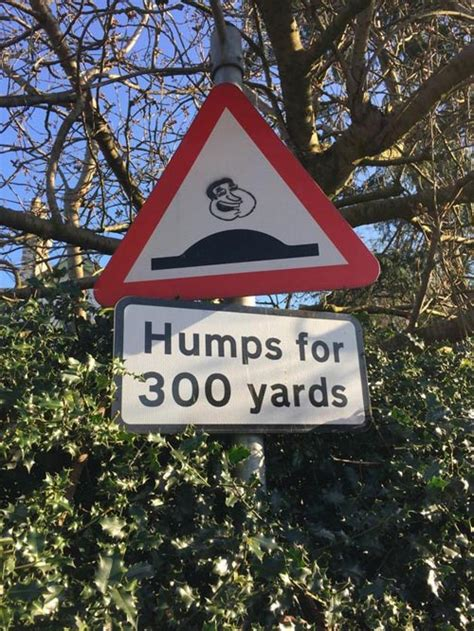 Hilarious Sign Pictures