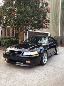 For Sale 99 Gt Hood - The Mustang Source - Ford Mustang Forums
