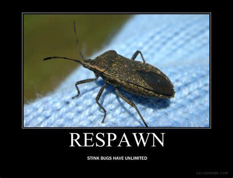 Bug Memes - stink bug demotivational by amybabe0707 on deviantart