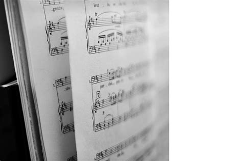 In music theory, the term scale degree refers to the position of a particular note on a scale 1 relative to the tonic, the first and main note of the scale from which each octave is assumed to begin. Music Theory & Composition College Degree Programs