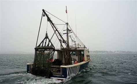 Scallop Boat by Scallop Fishermen Will Be Allowed To Catch More Next Year