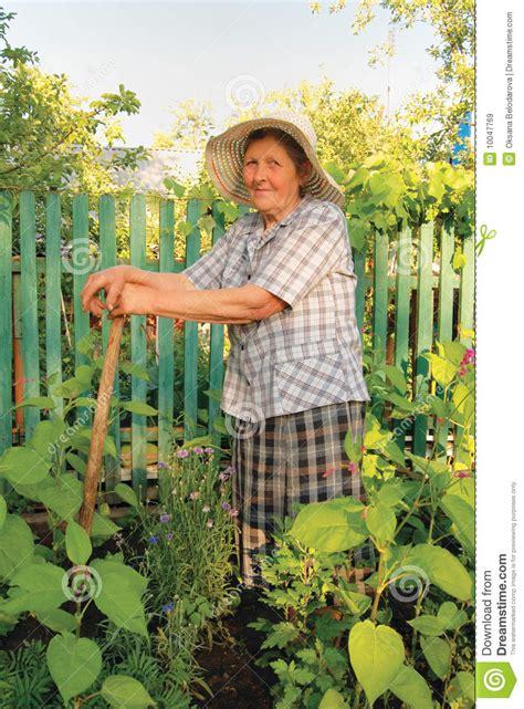 Alte Frau, Die Im Garten Arbeitet Stockbild  Bild Von