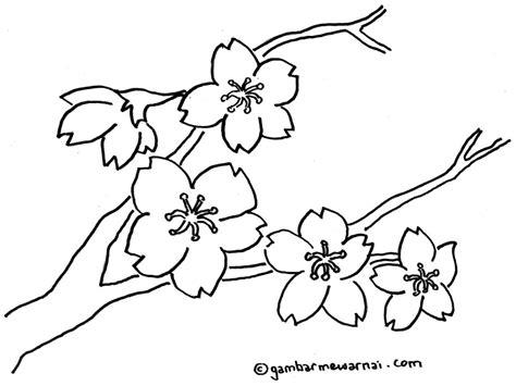 gambar bunga sakura diwarnai gambar mewarnai