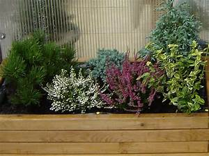 Winterharte Pflanzen Für Balkonkästen : herbstbepflanzung f r balkonk sten ~ Orissabook.com Haus und Dekorationen