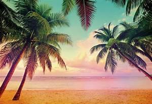 Bilder Von Palmen : fototapete miami 368x254 beach strand palmen florida sonnenuntergang hdr karibik ebay ~ Frokenaadalensverden.com Haus und Dekorationen