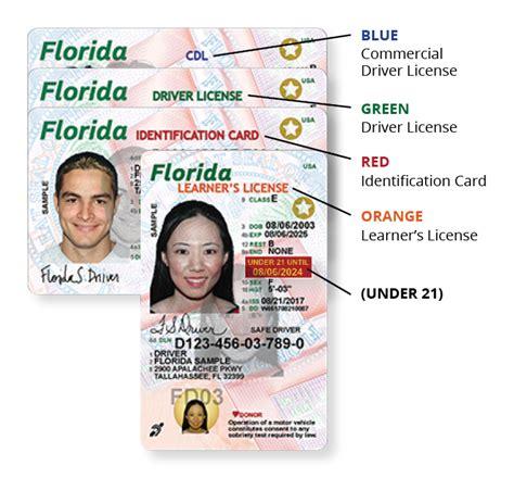 floridas  driver license  id card florida