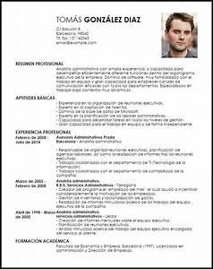 Modelo Curriculum Vitae Analista Administrativo