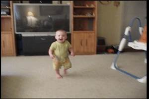 Free Funny Baby GIF by AFV Pets - Find & Share on GIPHY