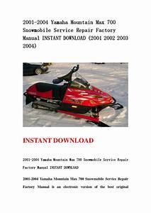 2001 2004 Yamaha Mountain Max 700 Snowmobile Service