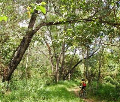 mountain biking day  philipines banaue sagada