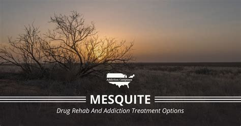 mesquite drug rehab centers  addiction treatment programs