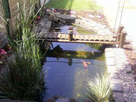 aquarium noyelles sous lens le bassin de jardin de mikey