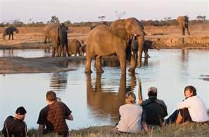 African Safari Vacation Where Childhood Dreams Come True