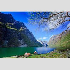 Norway In A Nutshell®, Oslobergen  Fjord Travel Norway