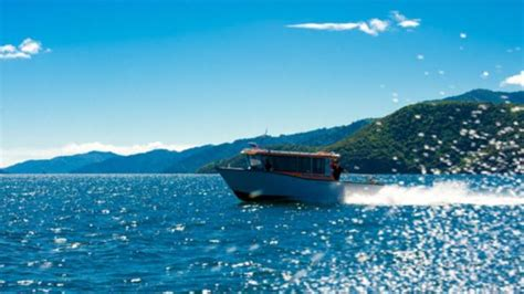 Picton Boat Trips by Picton New Zealand Cruise Excursions Shore Excursions