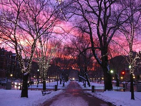 Best 25+ Boston Winter Ideas On Pinterest  Winter Time, Winter Images And Images Of Winter