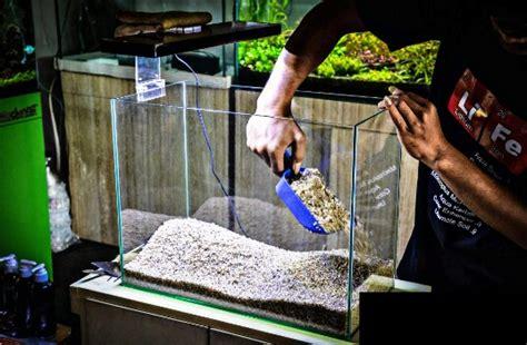 membuat aquascape sederhana  pemula lengkap