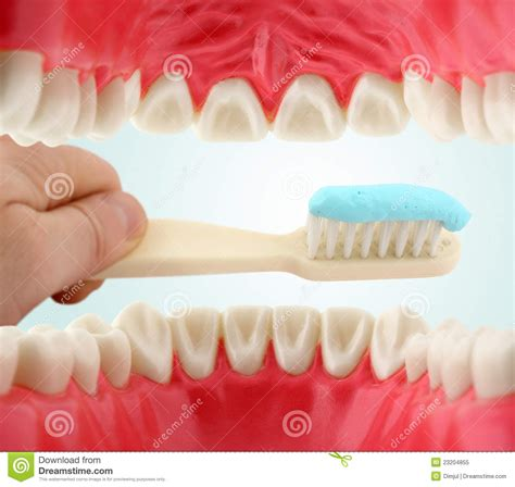 interno bocca bocca dall interno e tooth brush immagine stock immagine