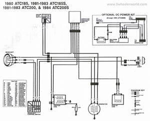 1997 Sea Rayder F16 Fuel Tank Wiring Diagram