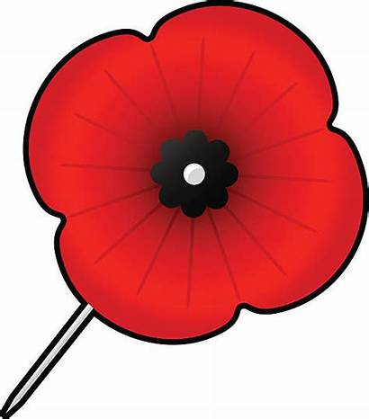 Poppy Clipart Remembrance Clip 9th Monday November