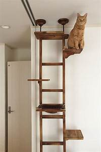 More For Cats Kratzbaum : this cat climbing tree looks like a ladder and offers a great place for your cat to hang out ~ Whattoseeinmadrid.com Haus und Dekorationen