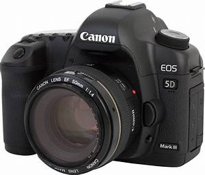 Canon 5D Mark III mini-review and impressions, with 5D Mark III underwater settings|Underwater ...