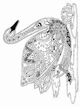 Coloring Swan Zentangle Adults Adult Printable Mycoloring sketch template