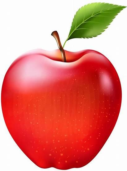 Apple Clipart Transparent Clip Fruit Fruits Yopriceville