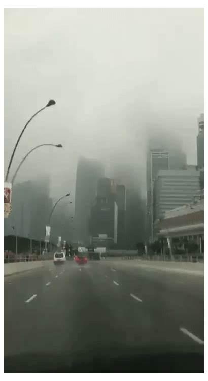 Rain Fog Mothership Sg Law Nature Pore