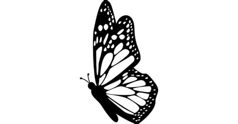 butterfly side view  detailed wings  vector icons