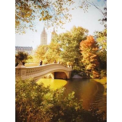 New York City autumn - Central Park Bow BridgeNY