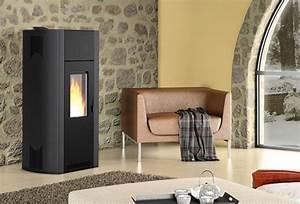 Quel Poele A Bois Choisir : quel chauffage choisir ma maison eco confort ~ Dailycaller-alerts.com Idées de Décoration