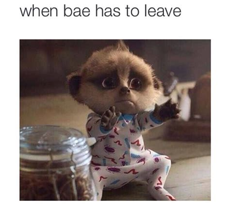 When Bae Memes - when bae has to leave funny hug leave funny