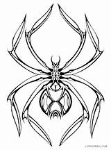 Spider Coloring Pages Iron Printable Drawing Halloween Clipartmag Cool2bkids Web sketch template