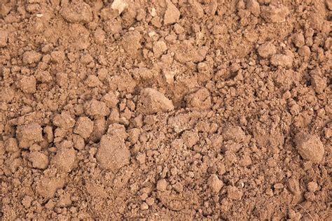 what is loam southpoint garden supplies soil southpoint garden supplies