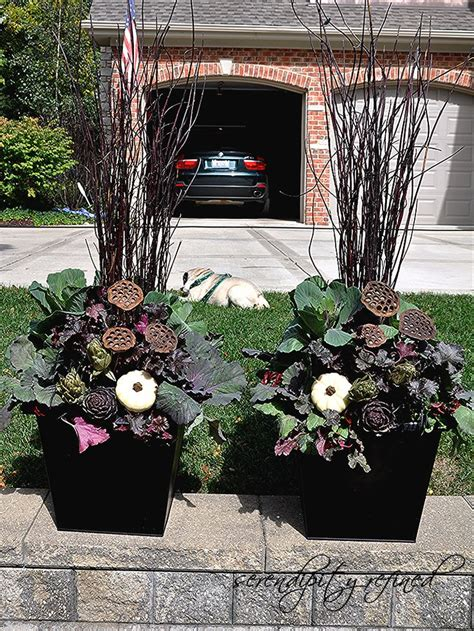 planting urns ideas 1000 images about halloween and fall on pinterest container gardening pumpkins and planters
