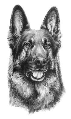 181 Best German shepherd Tattoo images | German shepherd dogs, German shepherd tattoo, German