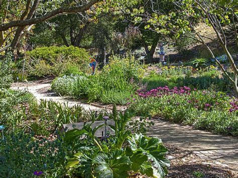 news san luis obispo botanical garden