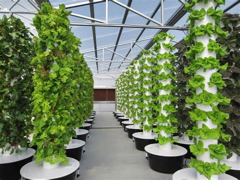 tower garden for farming is in bloom thanks to one
