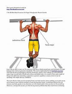 5 No Bs Best Back Exercises For Super Nitroglycerin Muscle Growth