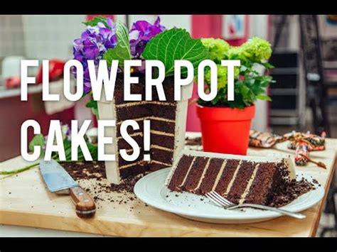flower pot   cake chocolate cake