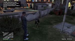 Chop - Grand Theft Auto V Game Guide | gamepressure.com