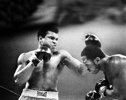 Ali Muhammad Frazier Joe Madison Square Vs