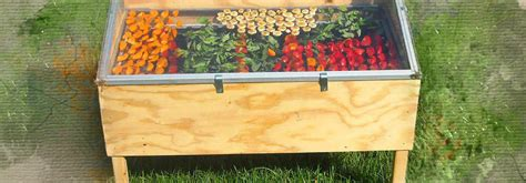 ремонт электросушилки для овощей и фруктов.
