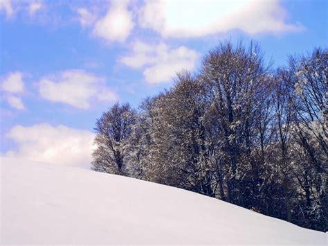 winter scene desktop wallpaper