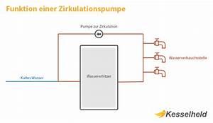 Zirkulationspumpe Warmwasser Test : schematische darstellung einer zirkulationspumpe ~ Orissabook.com Haus und Dekorationen