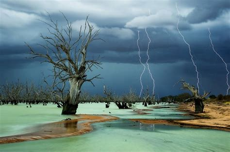 anzang nature photography competition open  entries